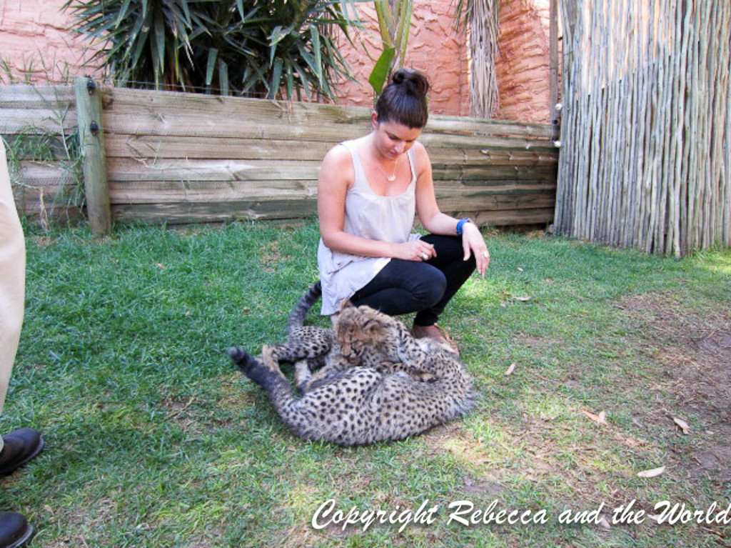 South Africa - With Tags-92