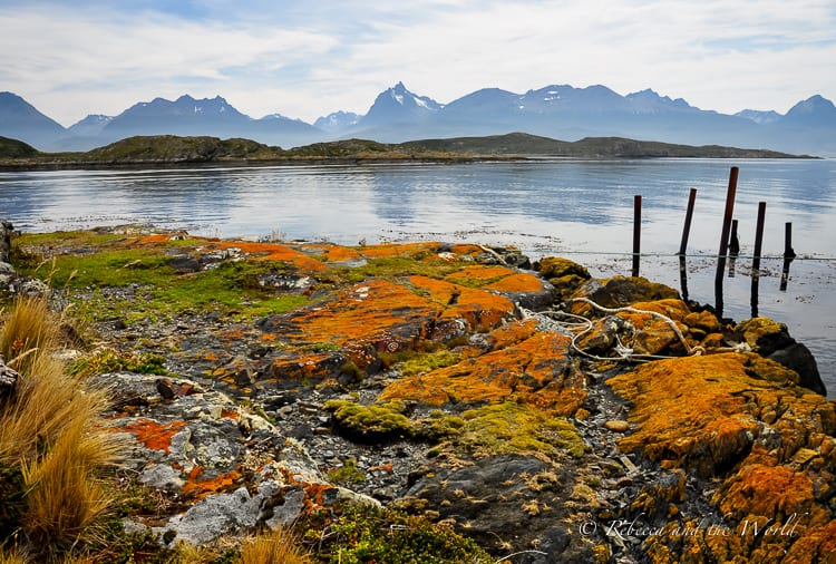 At the very southern tip of Argentina lies Ushuaia - the southernmost city in the world. There are so many things to do in Ushuaia, from hiking to camping to walking with penguins. Read on for the best things to do as well as when to go and where to stay.   #ushuaia #argentina #patagonia #argentinatravel #travel #travelguide #patagoniatravel #tierradelfuego #southamerica