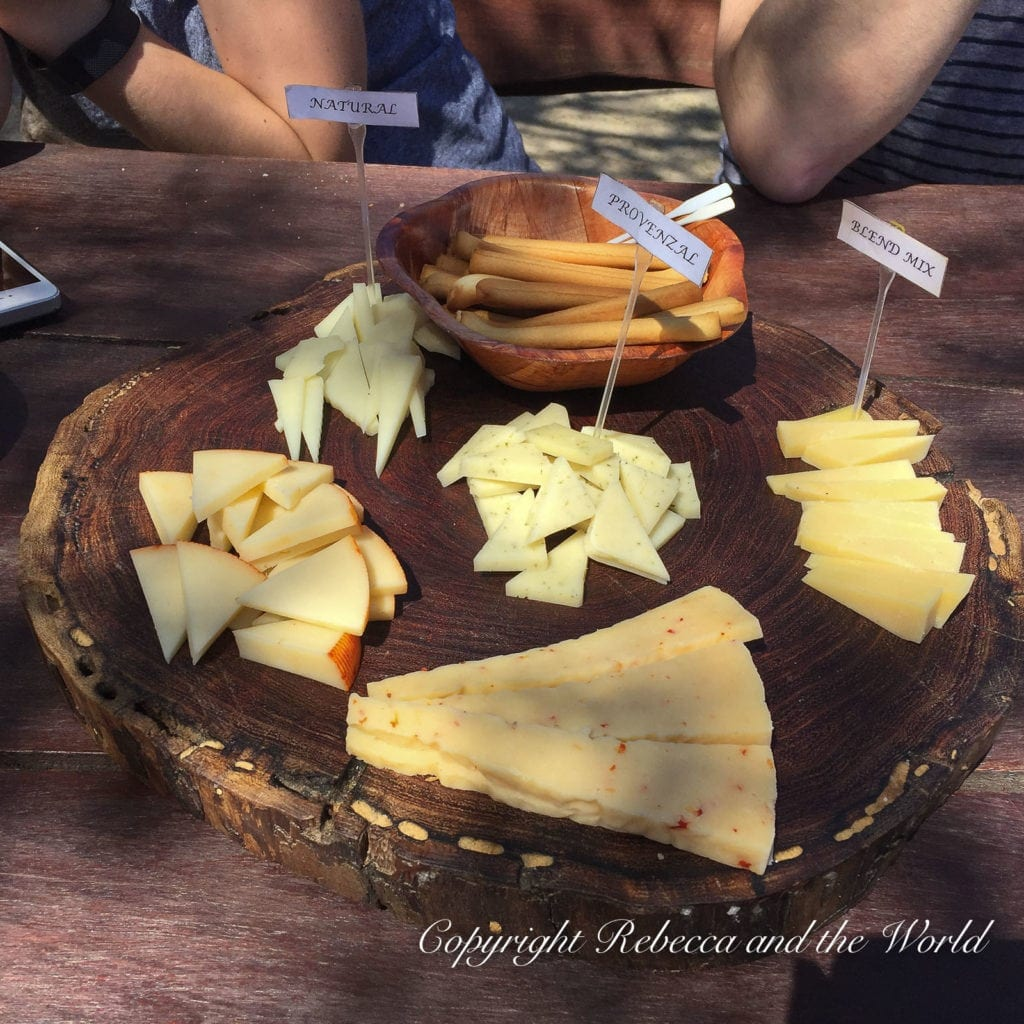 Cabras de Cafayate is a great place to stop in and try some goat's cheese and wine