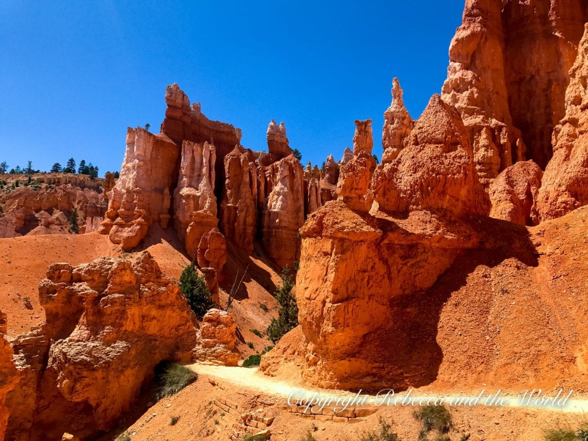 There are many great hikes in Bryce Canyon National Park, including the Navajo Loop / Queen's Garden trails