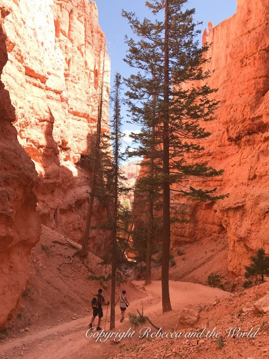 Wondering what to see in Utah? One of the best national parks is Bryce Canyon National Park