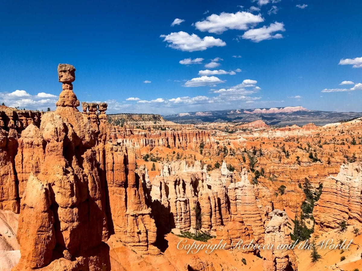 The hoodoos at Bryce Canyon National Park are out of this world