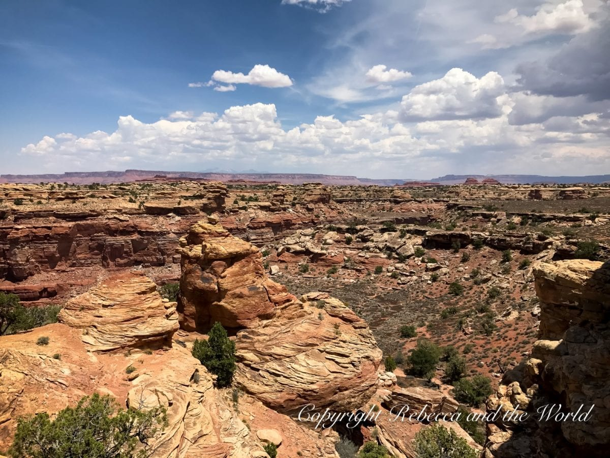 The Needles section of Canyonlands National Park isn't very visited, but the views are incredible from this Utah national park