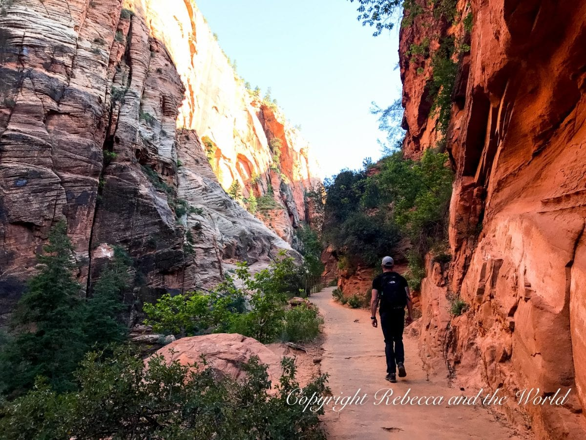 Angel's Landing in Zion National Park is a popular hike but also leads to a steep, scary viewpoint!