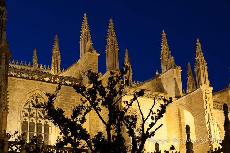 Barrio Santa Cruz is a great area to explore at night, when the Seville Cathedral is lit up and street performers entertain visitors