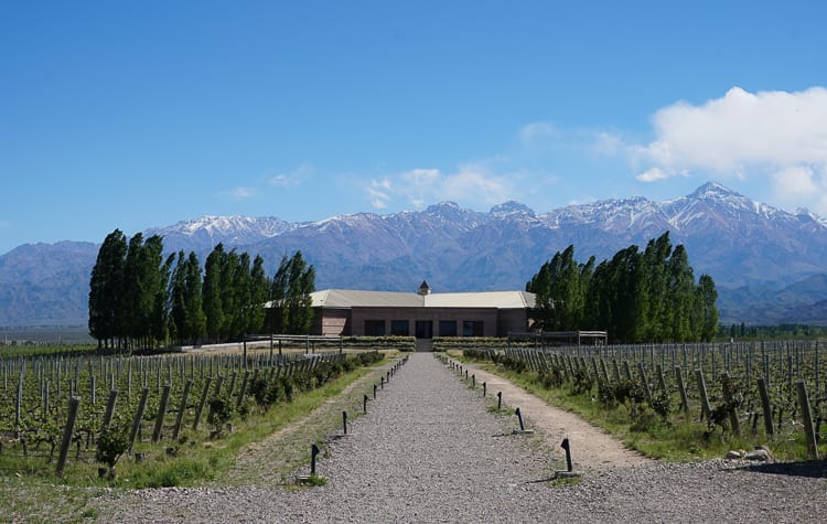 Escape to Mendoza during your Argentina honeymoon. Spend the days sipping wine.