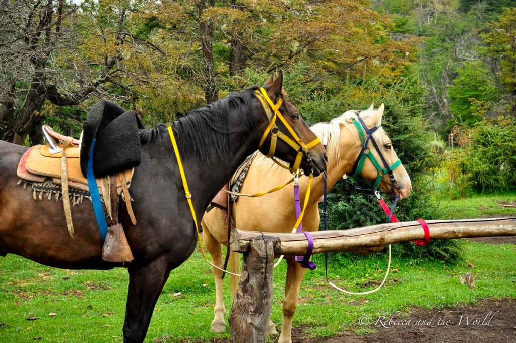 There are plenty of things to do in El Chalten, Argentina, beyond hiking - try horseriding or sip some local craft beer