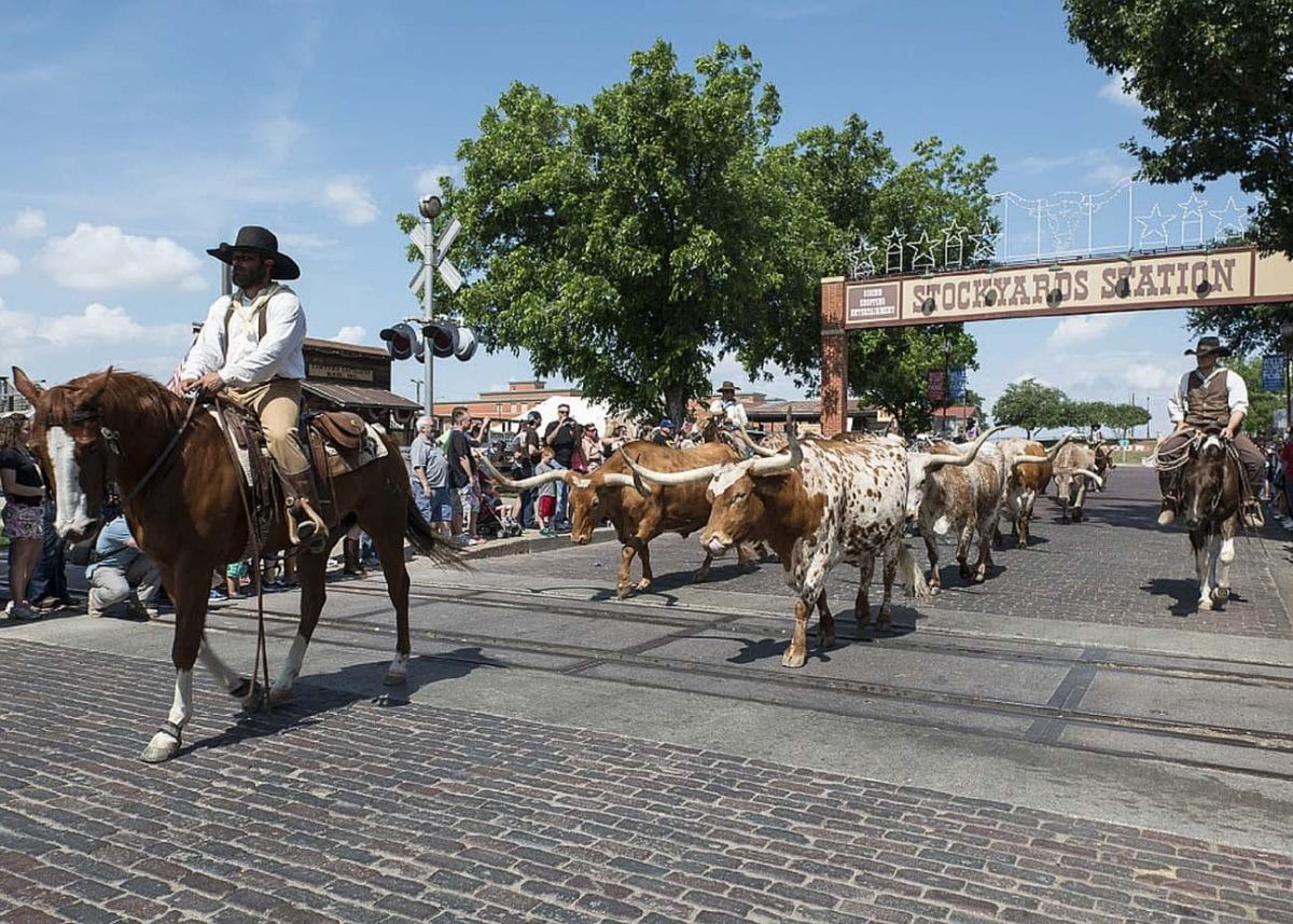 Fort Worth is famous as Texas's cowboy city