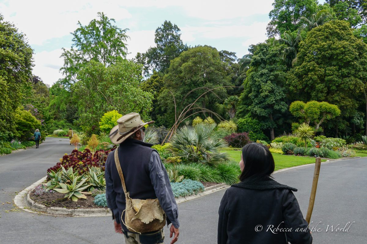 One of the best things to do in Melbourne is learn about Indigenous culture on an Aboriginal Heritage Walk through the Royal Botanic Gardens