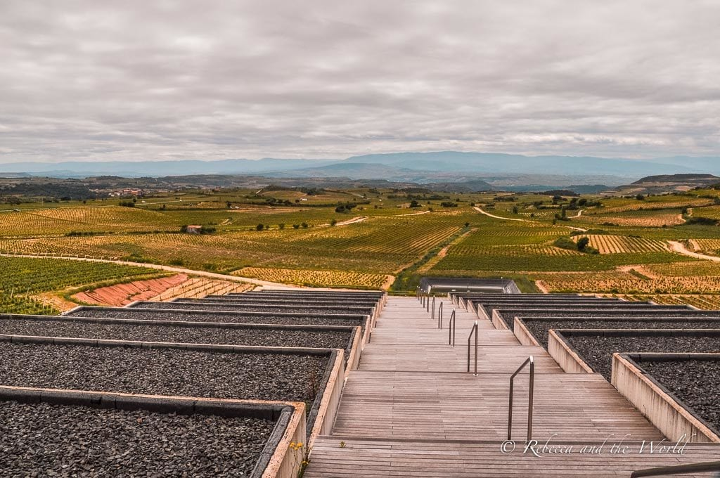 The views from Bodegas Baigorri are gorgeous - it's a must-visit winery in La Rioja