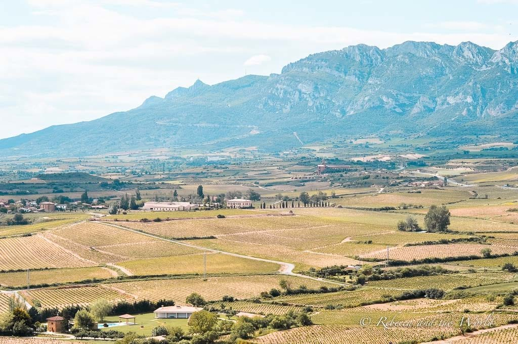 Enjoy the gorgeous views while on a La Rioja wine tour