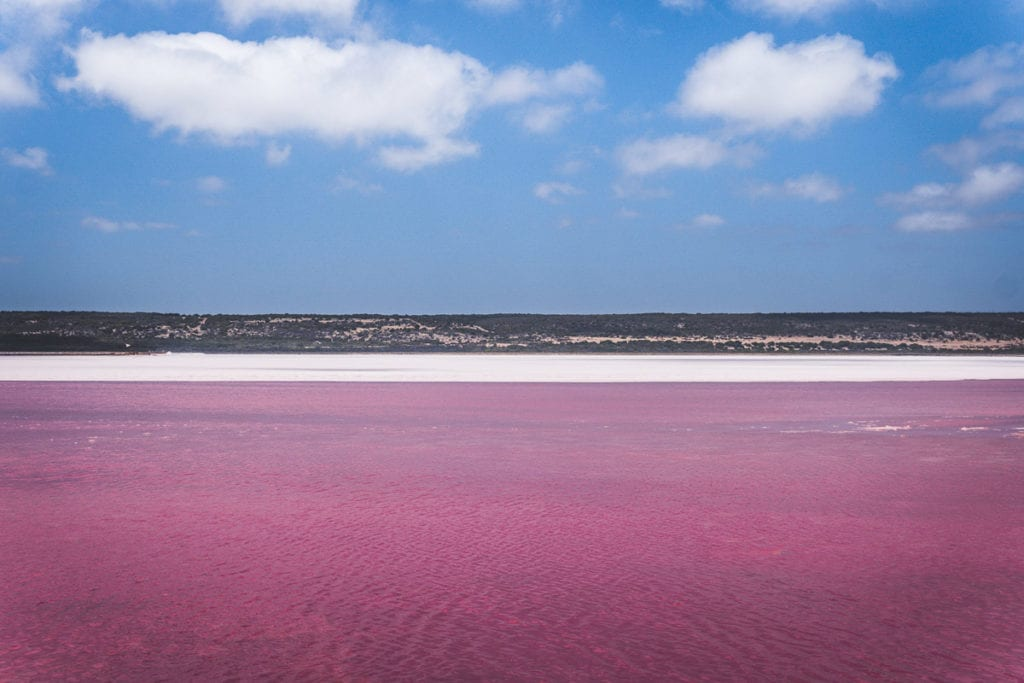 Several lakes in Australia are pink at times, believed to be because of the presence of a certain kind of algae