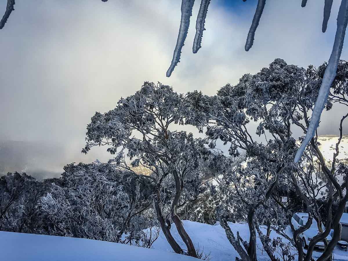 Many people may be surprised to know that you can go skiing in Australia at one of a handful ski resorts in the south of the country