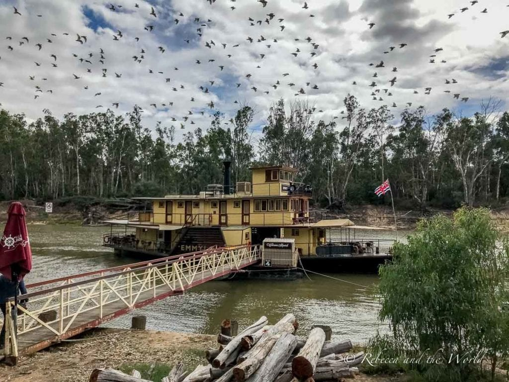 Echuca is a great place to visit in Australia. While it's a small town there's plenty to keep you busy, including taking a ride on one of the oldest operating paddlesteamers in the world