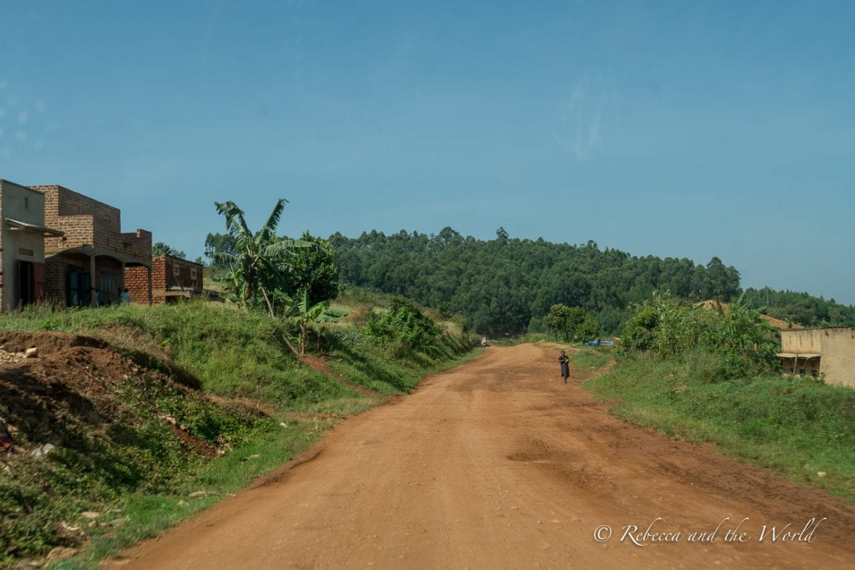 The best time to visit Uganda is during the dry season when road conditions will be better