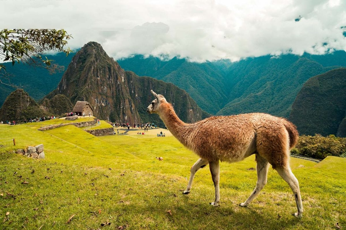 Peru is a country that's on many people's bucket lists because of the incredible Machu Picchu ancient ruin