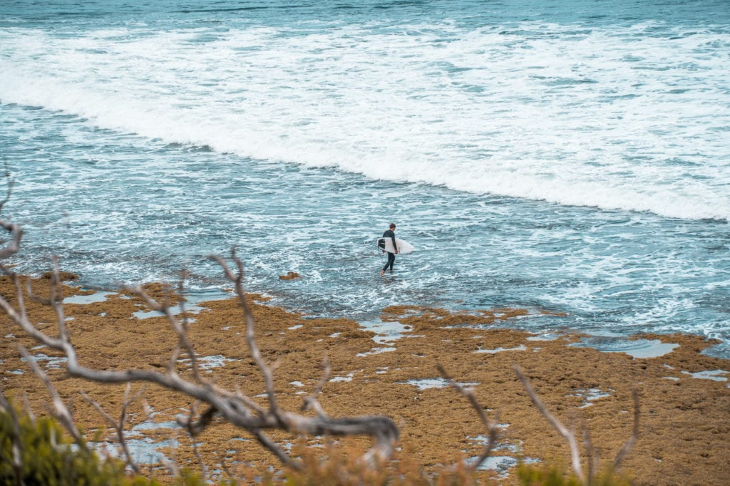 Bells Beach is one of the best beaches in Australia - and a must-visit on your Great Ocean Road trip
