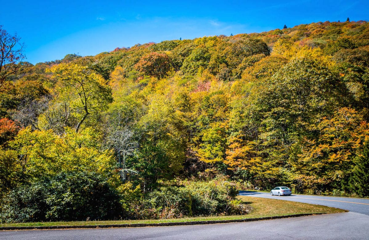 The Blue Ridge Parkway is one of the most beautiful USA road trips - visit in Fall to experience the changing colours of the leaves