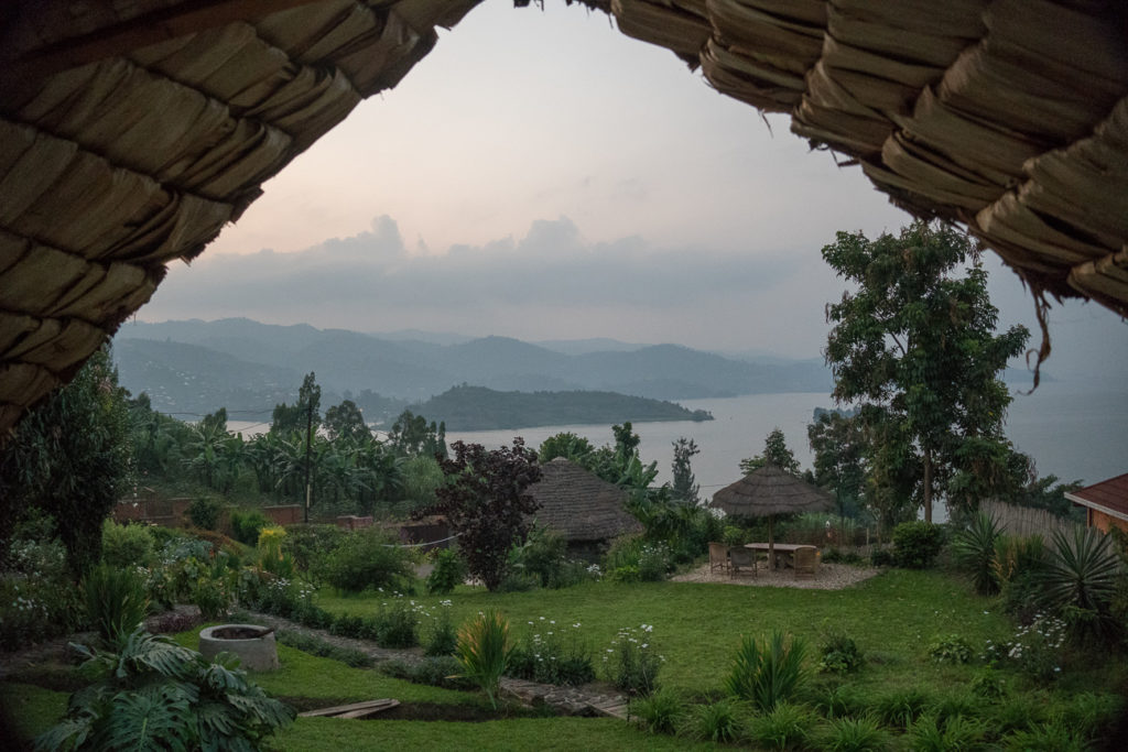 Gorilla trekking Uganda versus Rwanda? Both have their pros and cons - but whichever country you choose you'll have an amazing experience